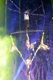Сложное качание циркаческое с дымом Стоковые Фото
