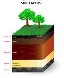 Слои профиля почвы Стоковая Фотография RF