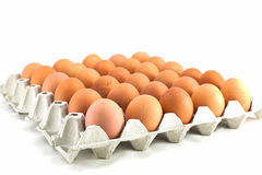 сломанные коробкой яичка яичка цыпленка внутри желтка Стоковые Фото