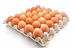 сломанные коробкой яичка яичка цыпленка внутри желтка Стоковое Изображение