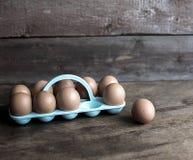 сломанные коробкой яичка яичка цыпленка внутри желтка Стоковые Фотографии RF