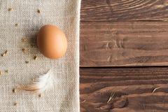 сломанные коробкой яичка яичка цыпленка внутри желтка стоковая фотография rf