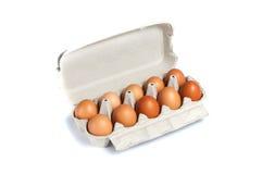 сломанный печь варящ живописание eggs неповрежденный прогресс некоторый поднос Стоковое Изображение RF