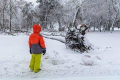 Сломал вниз с дерева на суровости упаденного снега Ребенок смотря ov Стоковое Изображение