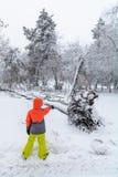 Сломал вниз с дерева на суровости упаденного снега Указывать ребенка Стоковая Фотография RF