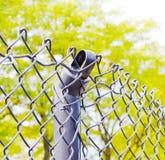 сломленная загородка Стоковая Фотография