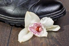 Сломленная идея чувств, который разбили цветок стоковая фотография rf