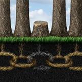 Сломленная цепь Стоковое Фото