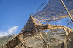 Сломленные сети Стоковое Фото