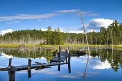 Сломленный деревянный мост на озере леса стоковая фотография rf