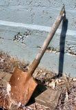 сломленный лопаткоулавливатель Стоковые Фото