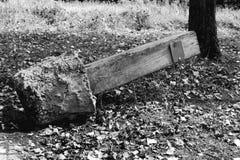 Сломленный указатель Стоковая Фотография RF