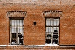 2 сломленных окна старого завода Стоковое Фото