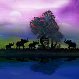 Слоны в установке темы Африки с красивым c иллюстрация вектора