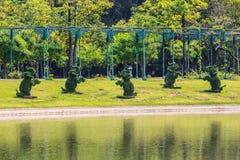 Слоны фигурной стрижки кустов в тропическом парке, Таиланде. Стоковое Изображение