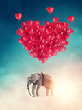Слон летания Стоковое Фото