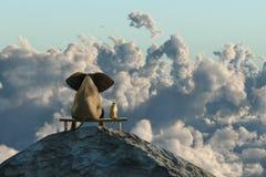 Слон и собака сидят на верхней части горы Стоковое Фото