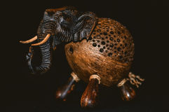 Слон мотыги африканский Стоковое фото RF