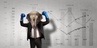 Слон одетый в деловом костюме Мультимедиа Стоковые Изображения RF