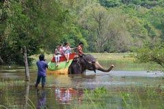 Слон с группой в составе европейские туристы женщин на overgrown пруде Сафари слона около Sigiriya стоковая фотография rf