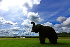 Слон сделанный путем гнуть дерево провода, на поле зеленой травы большом Стоковые Фото