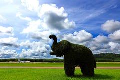 Слон сделанный путем гнуть дерево провода, на поле зеленой травы большом Стоковая Фотография RF