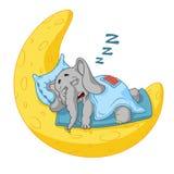 Слон Характер Он спит на луне Большое собрание изолированных слонов Вектор, шарж Стоковые Фотографии RF