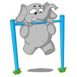 Слон Характер Pullups на баре Оно ` s крепко для его Большое собрание изолированных слонов Вектор, шарж Стоковые Изображения