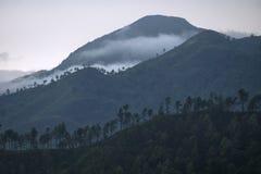 3 слоя гор в тумане, Эллы, Шри-Ланки Стоковое Изображение RF