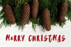 С Рождеством Христовым знак текста на зеленых ветвях дерева с конусами сосны Стоковое Изображение