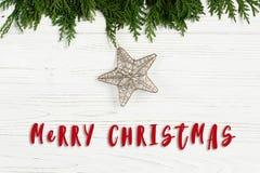 С Рождеством Христовым знак текста на золотой звезде на зеленых ветвях дерева Стоковые Изображения RF