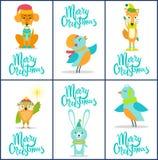 С Рождеством Христовым комплект ярких праздничных открыток Стоковые Фото