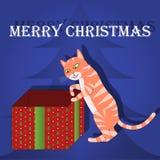 С Рождеством Христовым кот поздравительной открытки в коробке Стоковое Фото