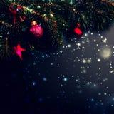 С Рождеством Христовым предпосылка украшения - ветви ели на bla Стоковые Изображения