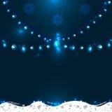 С Рождеством Христовым рождественская открытка в цветах зимы Стоковые Изображения