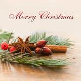 С Рождеством Христовым рождественская открытка с декоративными циннамоном и собакой анисовки подняла Стоковая Фотография