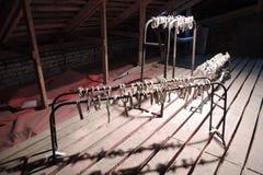 19/92 С самого начала Выставка современного искусства в Москве Стоковые Фото