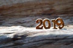 2019 с солнечным светом на на деревянном журнале стоковое изображение