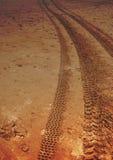 С следов пляжа дороги Стоковые Изображения RF