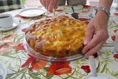 Служа торт в саде 04 Стоковые Фотографии RF