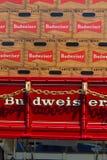 Случаи пива Budweiser на фуре Стоковые Изображения RF