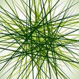 Случайные хаотические пересекая линии Абстрактный геометрический monochrome Стоковое Изображение
