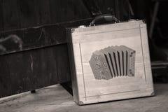 Случай Bayan аккордеона стоковые фотографии rf