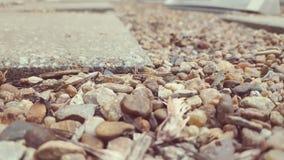 Слябы и камешки Стоковая Фотография