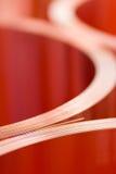Сloseup листовых медей в кренах Стоковая Фотография RF