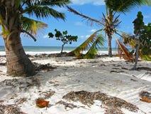 Сoconut海岛。古巴。 免版税库存照片