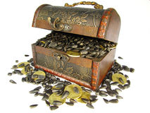 Сoffer用谷物和硬币装载了 免版税库存照片