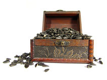 Сoffer που γεμίζουν με το σιτάρι και τα νομίσματα Στοκ Εικόνες