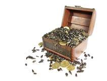 Сoffer που γεμίζουν με το σιτάρι και τα νομίσματα Στοκ Φωτογραφία