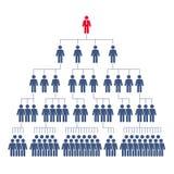 Ð¡orporate hierarchy, network marketing stock illustration